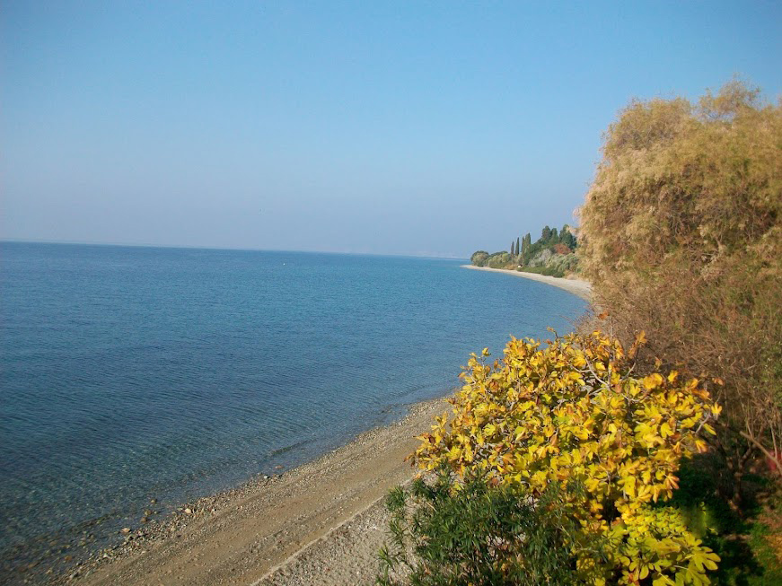 beach near eleonas hotel