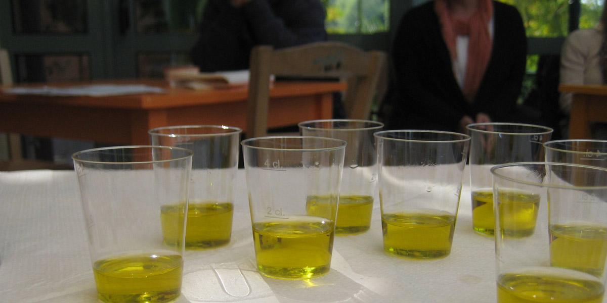 tasting olive oil a eleons hotel