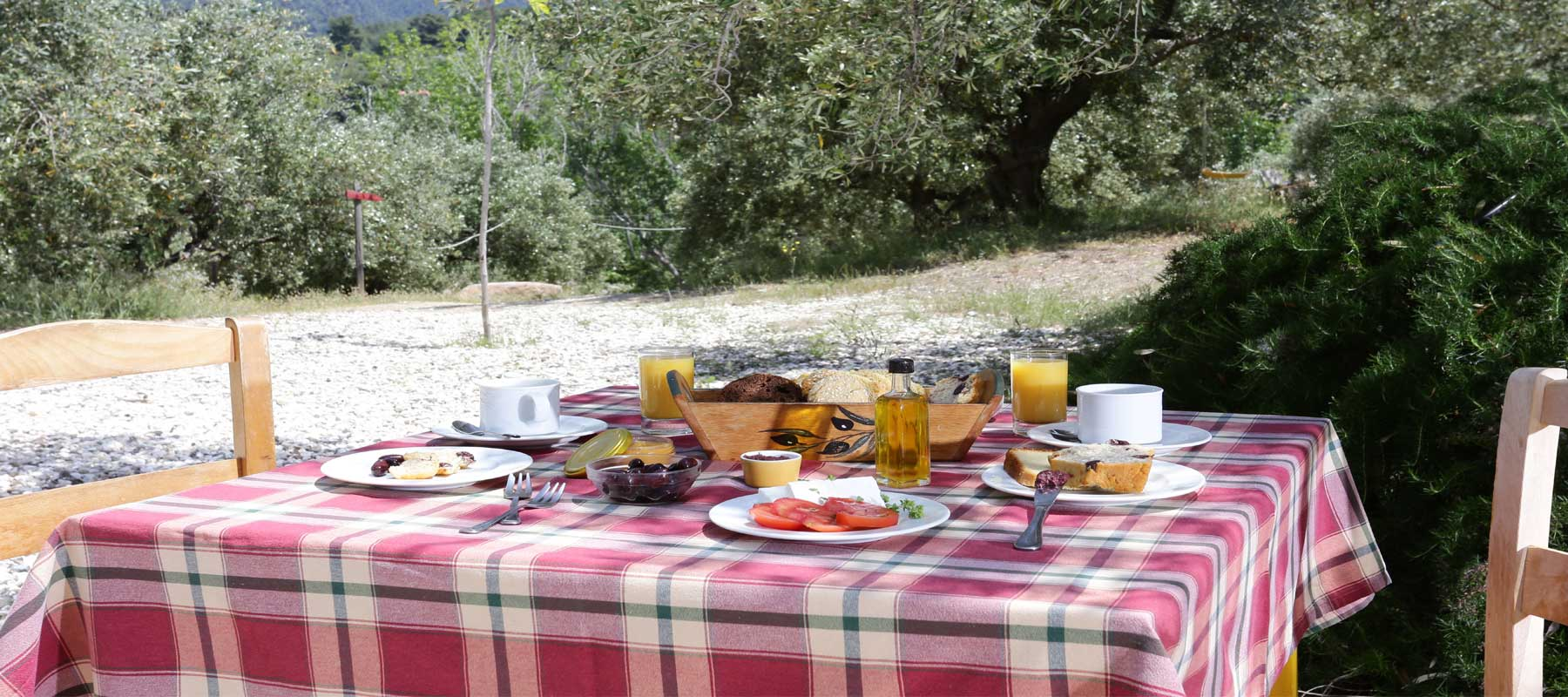 Greek breakfast uder the olive trees