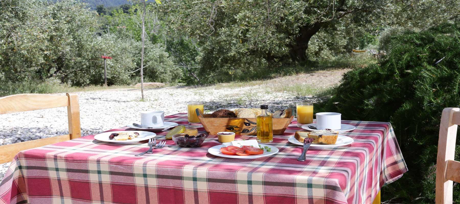 Petit déjeuner grec sous l'olivier