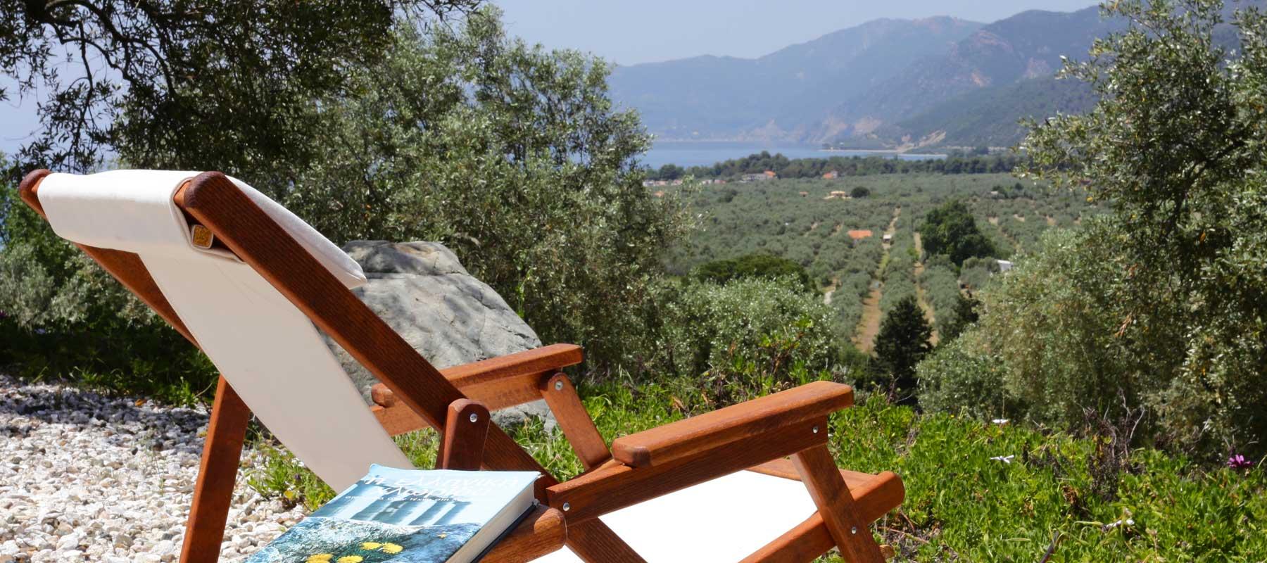 Un havre de paix avec vue tranquille sur la mer est calme et l'oliveraie de balayage